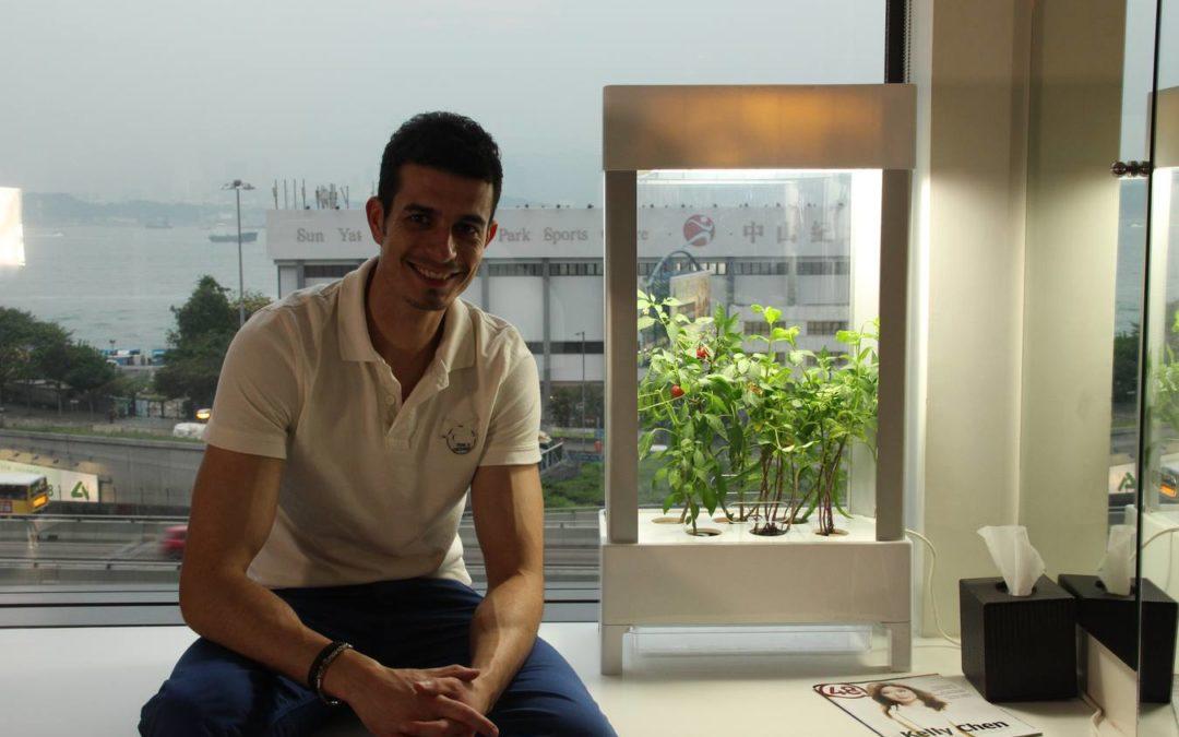 'Niwa': El mini invernadero del futuro
