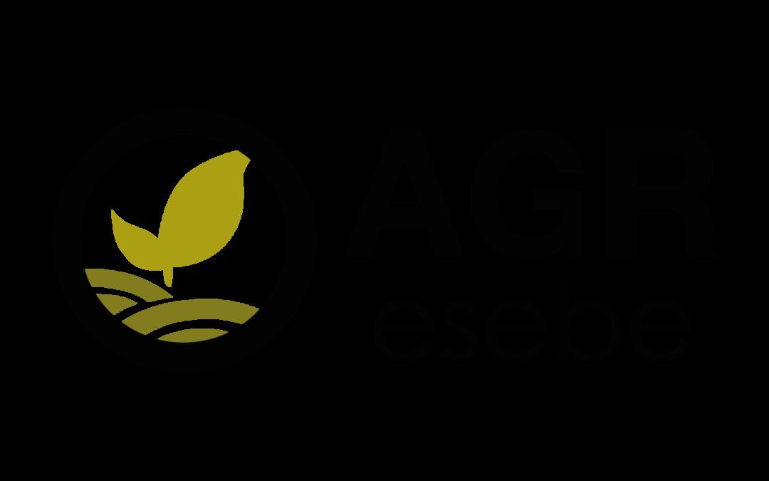 Agresebe