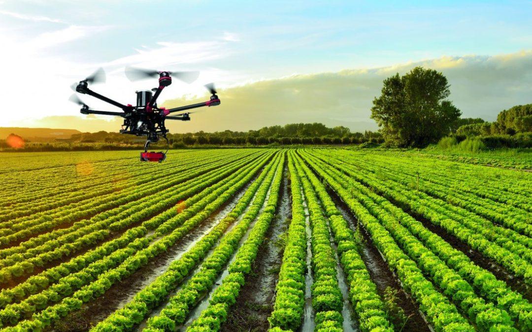 5 startups andaluzas impulsan el control de la agricultura a través del móvil en tiempos de coronavirus