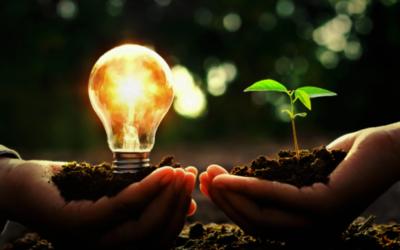 Estas son las tres iniciativas tecnológicas y sociales para impulsar la innovación sostenible premiadas por Telefónica