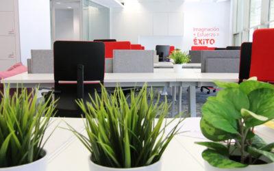 Economía y Vodafone lanzan el 15 de septiembre la octava edición del programa de aceleración de startups Minerva