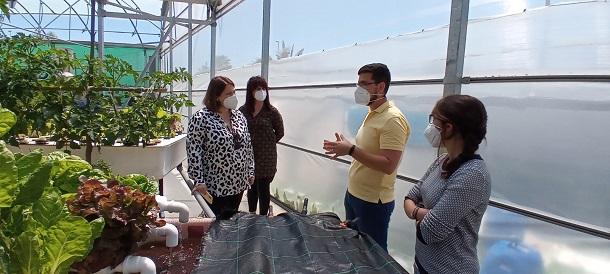 La Noria apoya el proyecto malagueño AlgaQua de producción de peces y algas para alimentación, cosmética o farmaceútica